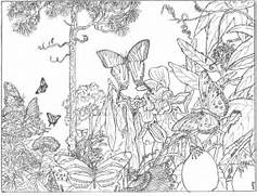 coloring pages  ...