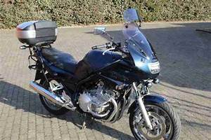 Motorrad Yamaha Xj 900 Diversion : motorrad yamaha xj 900 s diversion top bestes angebot ~ Kayakingforconservation.com Haus und Dekorationen
