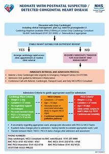 Neonatal Congenital Heart Disease Pathways