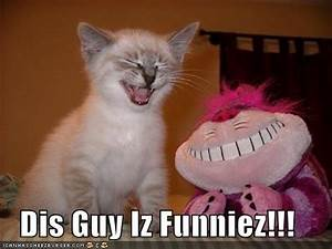 17 Best images about funny animals on Pinterest   Grumpy ...