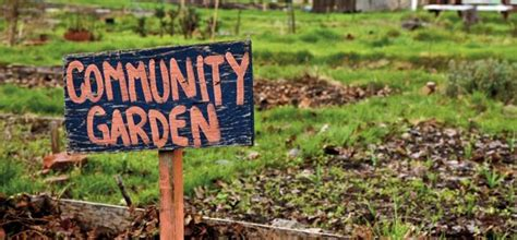 benefits of community gardens 13 best images about community gardens on