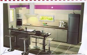 Plan De Cuisine 3d : quels recours pour une cuisine schmidt 39 messages ~ Nature-et-papiers.com Idées de Décoration