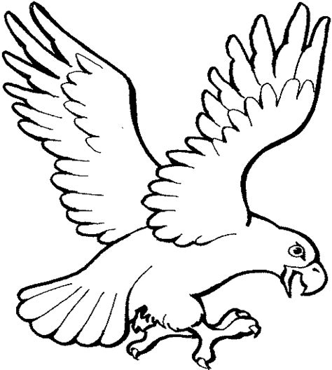 mexican eagle drawing coloring pages