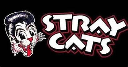 Stray Cats Band Rockabilly Rock Logos Saxophone