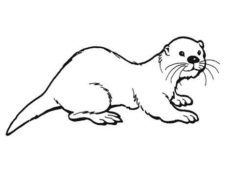 Otter Kleurplaat by Kleuterdigitaal Otter Kleurplaat 02 Inheemse Dieren