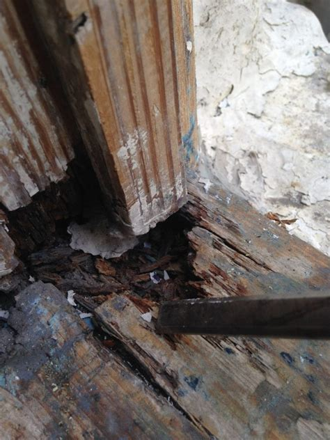 Window Sill Filler by How To Repair Weathered Window Sills The Craftsman