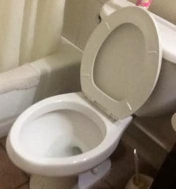 Put Toilet Seat Down