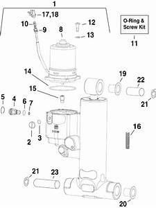Evinrude Trim  U0026 Tilt Hydraulic Assembly Parts For 2006