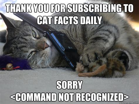 Cat Facts Meme - thank you for subscribing to cat facts daily sorry indifferent cat facts employee quickmeme