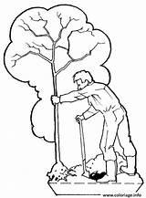 Arbre Plantation Coloriage Dessin Imprimer Gratuit Coloriages Fois Imprime sketch template