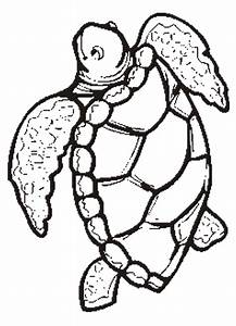 Free Printable Animal U0026quot Turtle U0026quot Coloring Pages