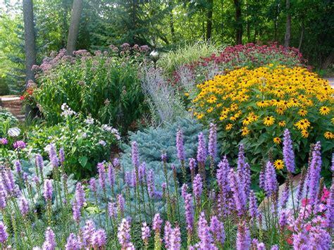 perennial flower garden sun perennials hgtv
