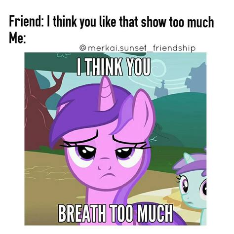 Mlp Funny Meme - 4809 best my little pony images on pinterest ponies pony and my little pony