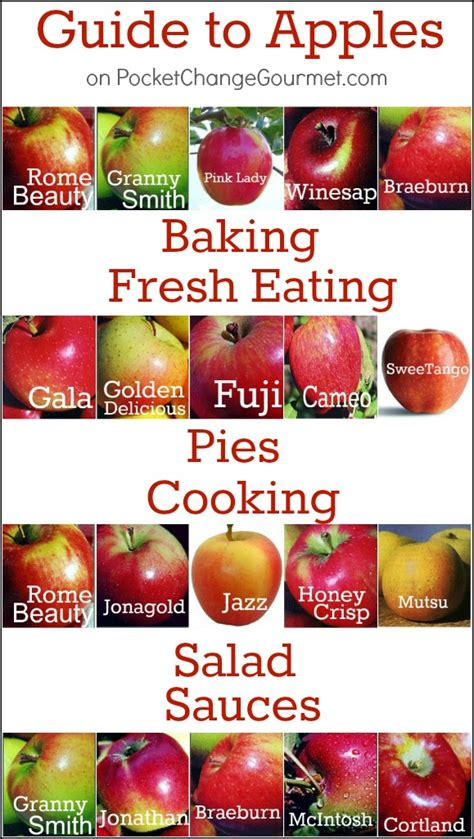 The Definitive Guide to Types of Apples and their Uses ...