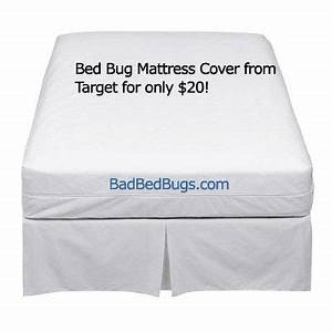 mattress cover for bed bugs cheap bedbug protector With bed bug safe mattress covers
