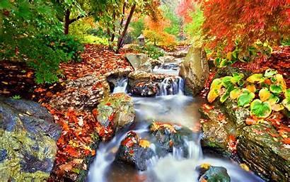Fall Season Garden Japanese Nature Autumn Waterfalls