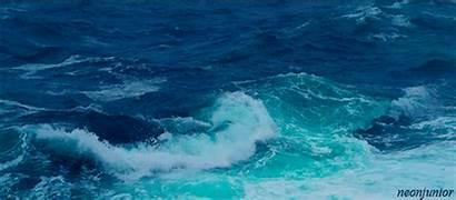 Ocean Gifs Risky Fish Water Years Oceano