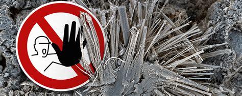 branchentreffpunkt forum asbestsanierung mit
