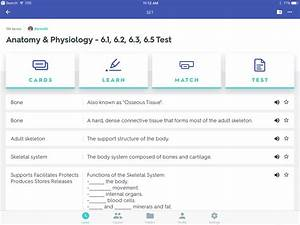 Anatomy And Physiology Tissue Quizlet
