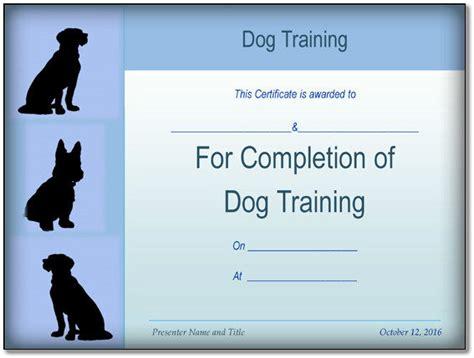 dog training certificate sample  format word
