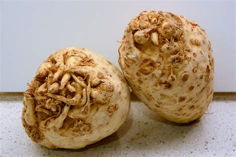 ricette sedano rapa al forno sedano rapa al forno con besciamella patate a fette intero