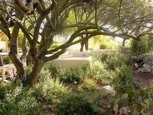 Tohono Chul Park Garden
