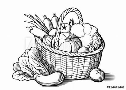 Vegetables Basket Clipart Broccoli Cabbage Wicker Carrots