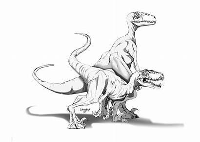 Jurassic Coloring Raptor Pages Velociraptor Rex Park