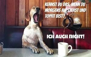 Lustige Guten Morgen Kaffee Bilder : guten morgen bilder und spr che zu teilen per facebook oder whatsapp ~ Frokenaadalensverden.com Haus und Dekorationen