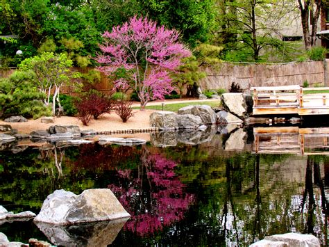 japanese garden denver top gardens in denver and colorado 171 cbs denver