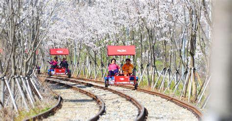 beginners guide  rail biking  south korea bk