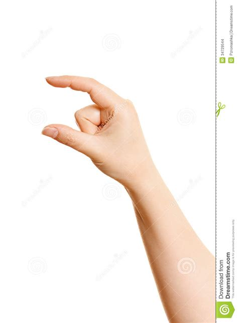 womans hand holding    white stock images