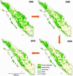 1 Deforestation In Sumatra From 1990 Until 2010  Lowland