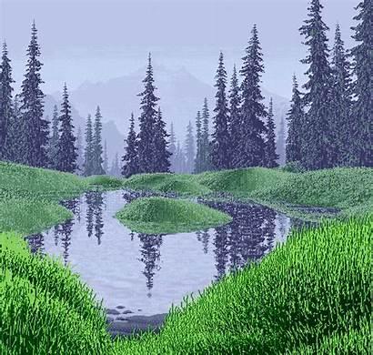 Rainy Swamp