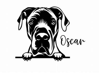 Dane Peeking Svg Decals Dog Decal Dogs