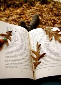 Reading Books Autumn Fall