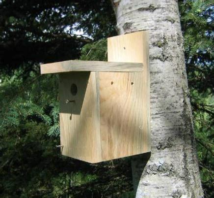 Fun Easy Bird House Plans For Beginnershousehold