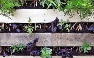 Vertikaler Garten Selber Bauen : ber 1000 balkonpflanzen gartenpflanzen zimmerpflanzen ~ Michelbontemps.com Haus und Dekorationen