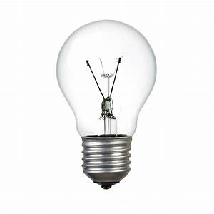 Image Gallery light bulb no background