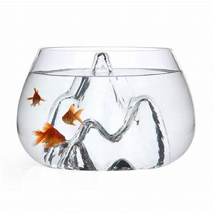 Cool Betta Fish Bowl