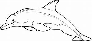 Black & White clipart dolphin - Pencil and in color black ...