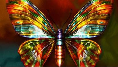 Butterfly Neon Gold Wallpapers Colors Backgrounds Bright