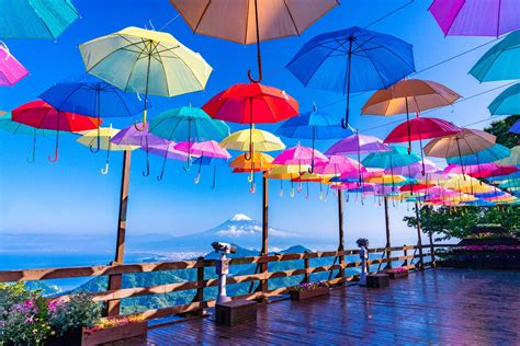 Japan's Rainy Season 2020: Travel Tips And What To Wear ...