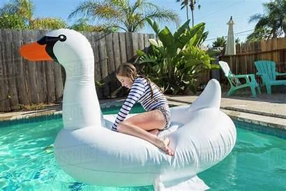 Inflatable Swan Sitting Pool Swimming Caucasian Royalty