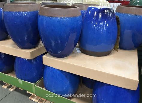 Stretto Ceramic Planter At Costco