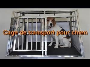 Video Pour Chien : cage de transport pour chien esraa youtube ~ Medecine-chirurgie-esthetiques.com Avis de Voitures