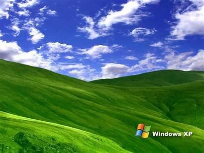 Xp Windows Grass Wallpapers Desktop Backgrounds Keywords