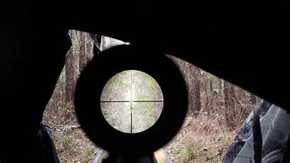 Scope Rifle Nikon Scopes Target Sniper Through