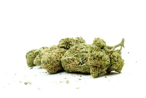 cory booker bill  eliminate drug convictions  bar