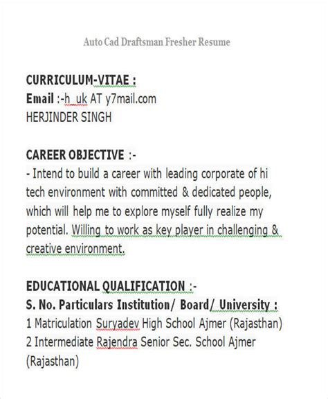 professional fresher resume templates   ms